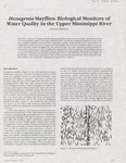 Hexagenia mayflies: biological monitors of water quality in the Upper Mississippi River