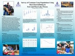 Common Carp Abundance and Age Structure in East and West Lake Winona