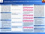 Exploration of hydrolysis pathways of alkyl and aryl phosphites