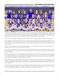Volleyball Program 2018: Winona State University