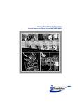 Winona Currents Annual Report 2008
