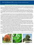 New Tree Plantings in 2018 by Bill Meyer