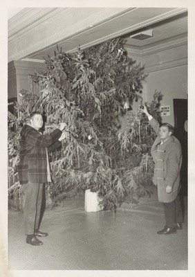 Putting up Christmas Tree in Somsen
